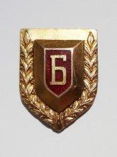 Бранникъ - наградна значка